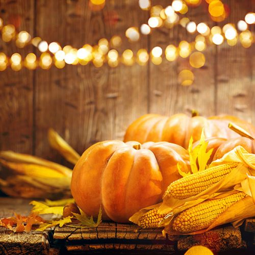 Pumpkin, Squash. Happy Thanksgiving Day Background. Autumn Thanksgiving Pumpkins over wooden background with garland still-life. Beautiful Holiday Autumn festival concept scene Fall, Harvest.